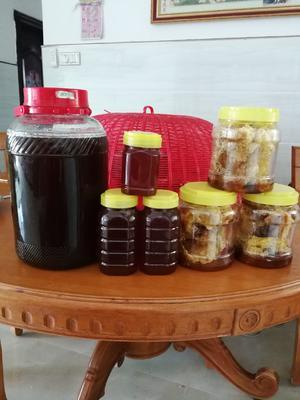 海南省海南省东方市土蜂蜜 塑料瓶装 100% 2年