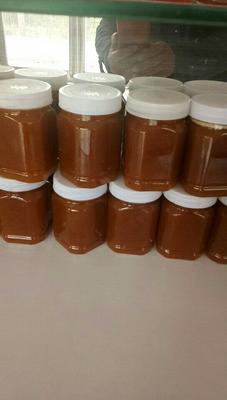 河南省许昌市长葛市土蜂蜜 塑料瓶装 98% 2年以上