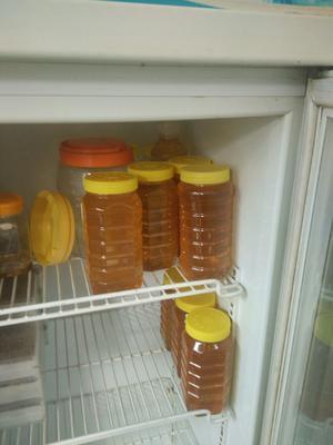 山西省临汾市洪洞县意蜂蜂蜜 塑料瓶装 100% 2年以上