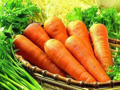湖南省娄底市娄星区长红胡萝卜 10cm以下 2两以下 3~4cm