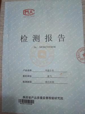 陕西省榆林市米脂县米脂小米