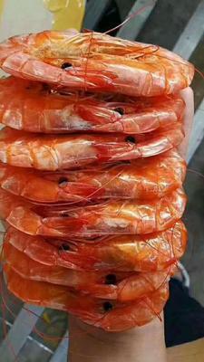 山东省滨州市沾化区南美白对虾 人工殖养 9钱以上