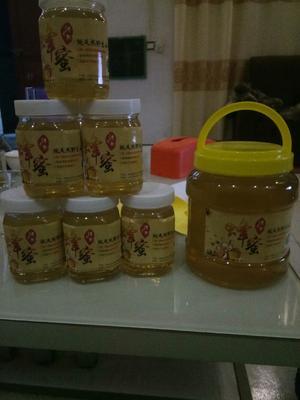 河南省平顶山市宝丰县洋槐蜂蜜 塑料瓶装 100% 2年以上