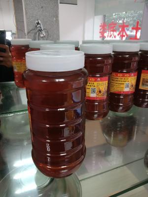 湖南省娄底市娄星区土蜂蜜 玻璃瓶装 80%以上 1年