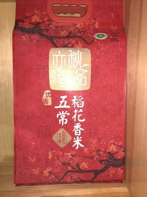 这是一张关于五常大米 一季稻 梗米 一等品的产品图片