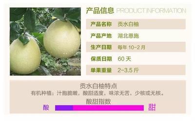 湖北省恩施土家族苗族自治州宣恩县贡水白柚 2.5斤以上