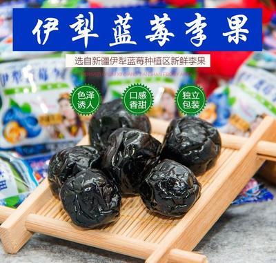 河北省沧州市沧县蓝莓李果 冻果 6 - 8mm以上