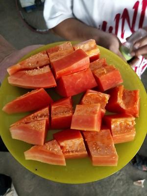 江西省赣州市瑞金市红心木瓜 1 - 1.5斤
