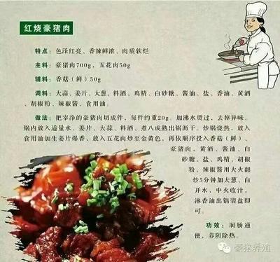 重庆江津区豪猪肉 生肉
