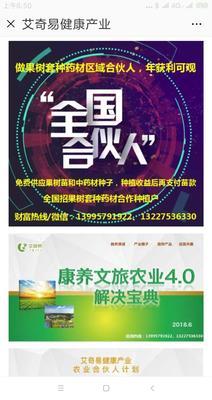 湖北省襄阳市樊城区青皮八月瓜 种植 60g以下
