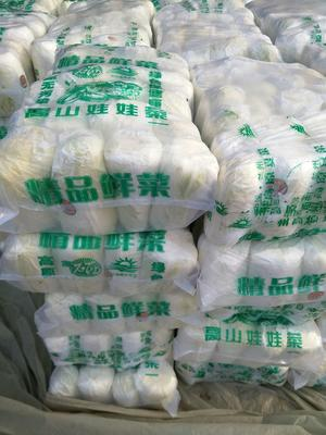 江苏省徐州市铜山区黄心娃娃菜 7~10两