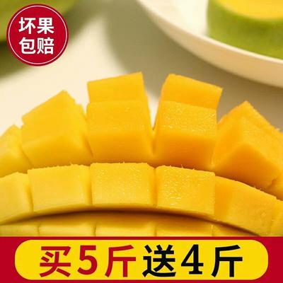玉芒 【热售】当季热带现摘香芒 发九斤净果