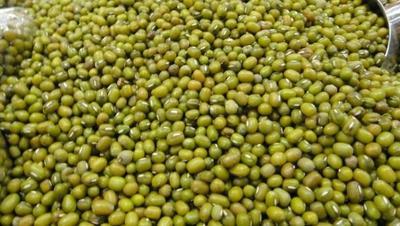 黑龙江省齐齐哈尔市龙江县毛绿豆 散装 2等品