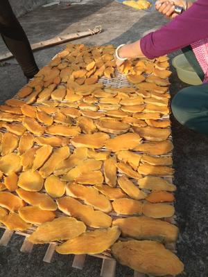 湖南省衡阳市祁东县红薯干 片状 散装 半年