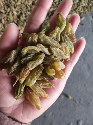 这是一张关于绿香妃葡萄干 优等的产品图片