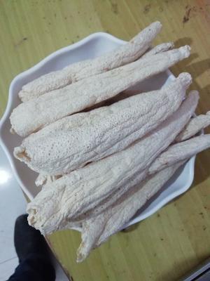 贵州省毕节市大方县冬荪 10mm~15mm 10cm~15cm 干竹荪 混迹通货
