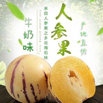 云南省昆明市官渡区圆果 3 - 4两以上