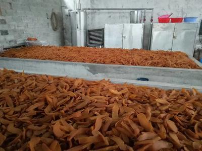 广西壮族自治区贵港市平南县红心红薯干 条状 散装 半年