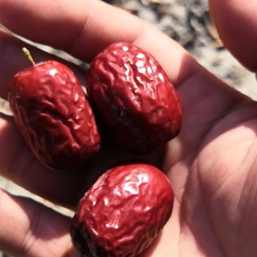 新疆红枣,若羌红枣红枣,非和田大枣,
