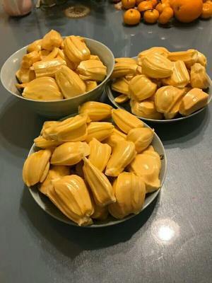 广西壮族自治区南宁市江南区红肉菠萝蜜 10斤以下