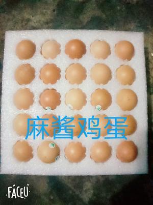 河北省廊坊市安次区麻酱鸡蛋 箱装