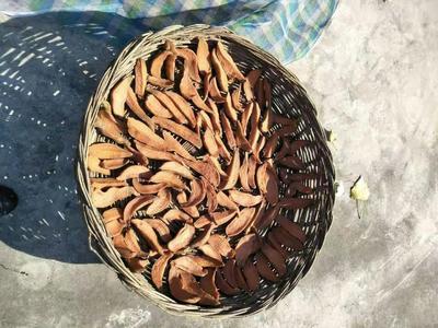 河北省秦皇岛市青龙满族自治县红薯干 条状 袋装 半年