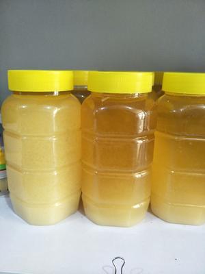内蒙古自治区呼伦贝尔市扎兰屯市椴树蜜 塑料瓶装 98% 2年以上