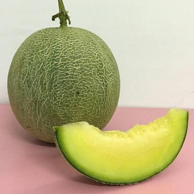 海南省三亚市海棠区梅陇瓜 2斤以上