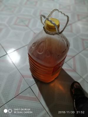 河南省三门峡市灵宝市油葵油