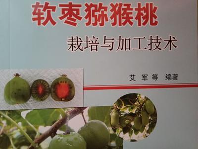 辽宁省丹东市振兴区其它农资
