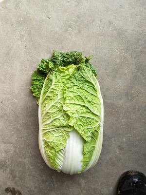 湖北省荆门市钟祥市黄心大白菜 2~3斤 净菜