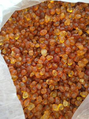 云南省西双版纳傣族自治州勐海县食用桃胶 24个月以上