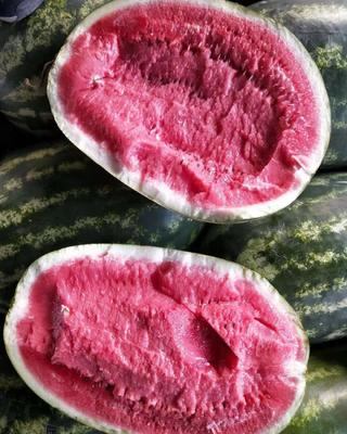云南省德宏傣族景颇族自治州芒市缅甸西瓜 有籽 2茬 9成熟 15斤打底