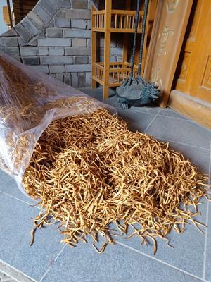 陕西省渭南市韩城市陕西黄花菜 袋装 一级