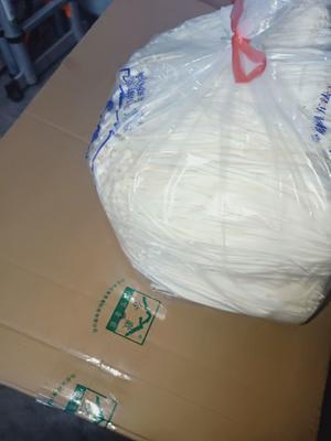 江苏省连云港市海州区白金针菇 13cm~15cm ≥1.5cm 未开伞 一级