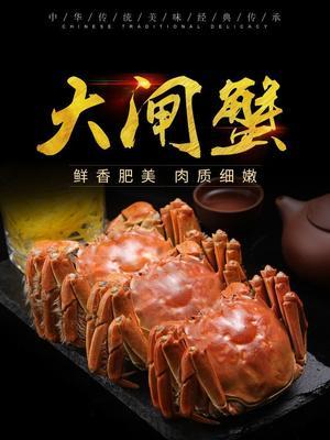 江苏省扬州市江都区阳澄湖大闸蟹 1.2两 母蟹