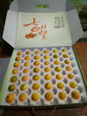 广西壮族自治区柳州市融安县滑皮金桔 3-4cm 1-1.5两