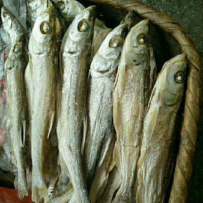 这是一张关于野生干鱼的产品图片