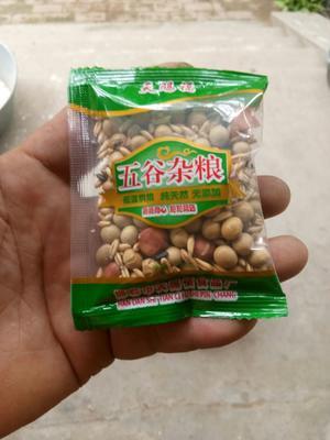 河北省邯郸市丛台区黄绿豆 袋装 1等品