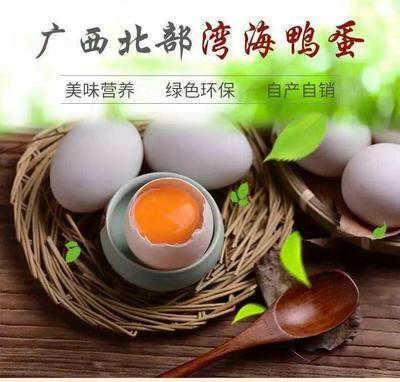 广西壮族自治区防城港市防城区海鸭蛋 食用 散装