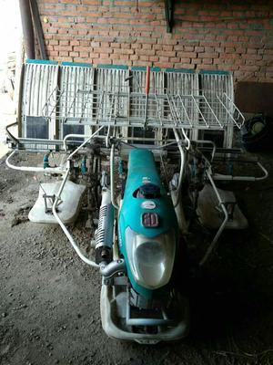 黑龙江省佳木斯市桦南县插秧机