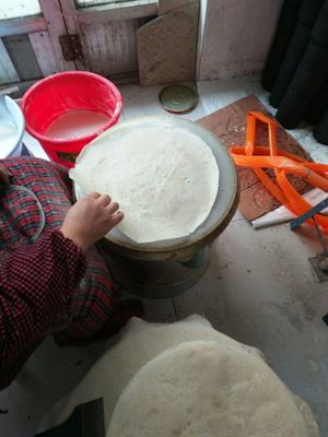 山东省枣庄市滕州市煎饼 1个月