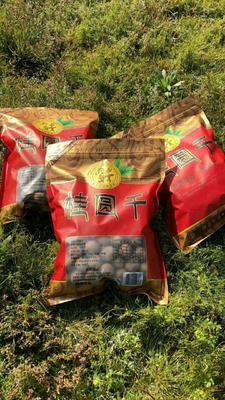 广西壮族自治区崇左市龙州县广西桂圆干 袋装 一等 带壳