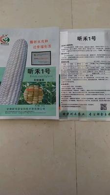 甘肃省张掖市民乐县玉米种子 ≥90% ≥97% ≥99% 双交种 ≤5%