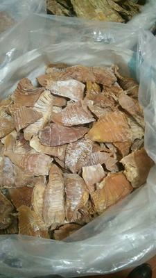 安徽省黄山市屯溪区干笋片 袋装 半年