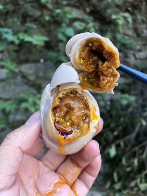 四川省内江市威远县海鸭蛋 食用 礼盒装