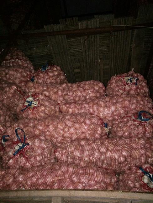 中牟大蒜 混級統貨 多瓣蒜