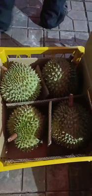 广西壮族自治区柳州市鱼峰区干荛榴莲 60 - 70%以上 3 - 4公斤