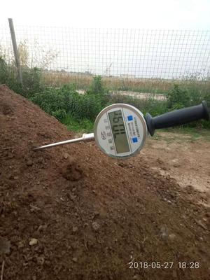 河南省鹤壁市淇滨区温度检测仪