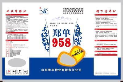 河北省石家庄市新华区玉米种子 ≥85% ≥99% ≥99.9% 双交种 ≤13%